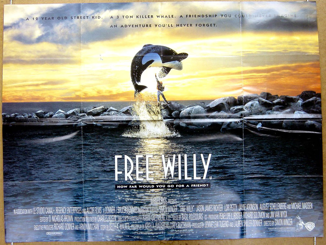 free willy original cinema movie poster from pastposters