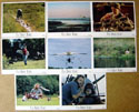 Fly Away Home<br><p><i>Set Of 8 Lobby Cards</i></p>