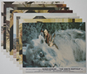 White Buffalo (The) <p><a> Set of 8 Original Colour Front Of House Stills / Lobby Cards </i></p>