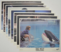 Free Willy <p><a> Set Of 8 Cinema Lobby Cards </i></p>