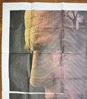 THE MACKINTOSH MAN – 6 Sheet Poster – TOP Left