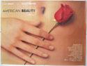 AMERICAN BEAUTY Cinema Quad Movie Poster