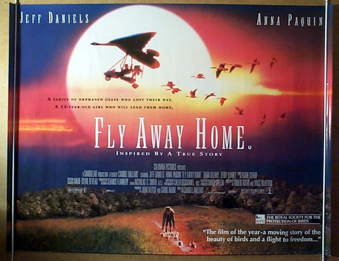 Fly Away Home - Original Cinema Movie Poster From pastposters.com ...
