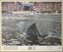 JAWS 3-D (Card 1) Cinema 7 Colour FOH Stills / Lobby Cards
