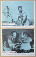 White Lightning <p><a> 2 Original Front Of House Stills / Lobby Cards </i></p>