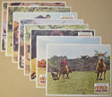Africa: Texas Style <p><i> Set Of 8 Cinema Lobby Cards </i></p>