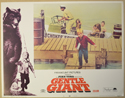 GENTLE GIANT (Card 5) Cinema Lobby Card Set