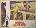 GENTLE GIANT (Card 6) Cinema Lobby Card Set