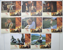 Rob Roy <p><a> Set Of 8 Cinema Lobby Cards </i></p>