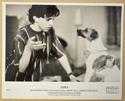PAWS Original Cinema Press Kit – Press Still 03