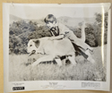 OLD YELLER (Still 2) Cinema Black and White Press Stills