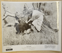 OLD YELLER (Still 3) Cinema Black and White Press Stills