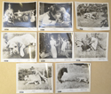OLD YELLER Cinema Black and White Press Stills