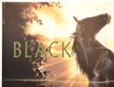 BLACK BEAUTY (Top Left) Cinema Quad Movie Poster