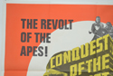 CONQUEST OF THE PLANET OF THE APES (Top Left) Cinema Quad Movie Poster