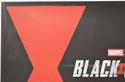 BLACK WIDOW (Top Left) Cinema Quad Movie Poster
